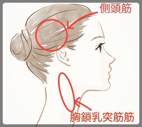 側頭筋と胸鎖乳突筋筋をほぐす